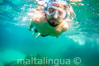 Um aluno snorkeling