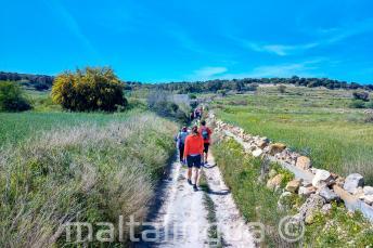Um grupe de alunos de inglês camihando no campo em Malta